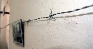 António Bebiano Carreira – Holocausto