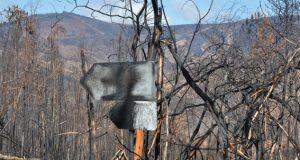 Aprovados investimentos de 3 milhões de euros para a reposição de infraestruturas danificadas pelos incêndios