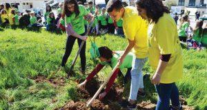 Município de Pedrógão Grande assinalou Dia Internacional da Floresta em parceria com a GNR e Agrupamento de Escolas