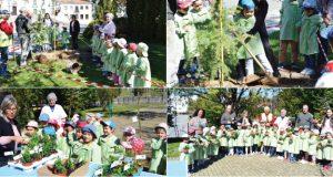 Com os meninos do ensino pré-escolar… Município de Pedrógão Grande assinalou Dia da Floresta