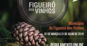 """Concurso de Fotografia """"A VER Figueiró dos Vinhos"""""""