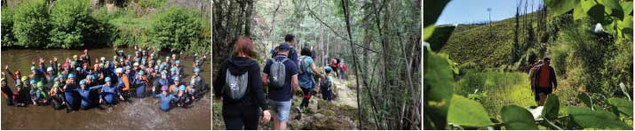 Walking Weekend'19 – 200 participantes caminharam e levaram Pampilhosa da Serra no coração