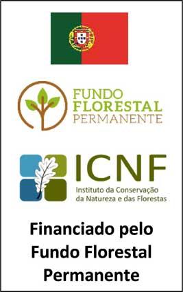 Pedrógão Grande consegue apoio de 10 mil euros para defesa da floresta – Candidatura ao Apoio ao Funcionamento dos Gabinetes Técnicos Florestais