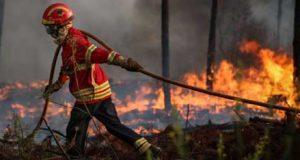 Dispositivo de combate a incêndios florestais a partir de amanhã vai ser reforçado com mais operacionais